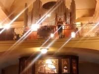 organo 2